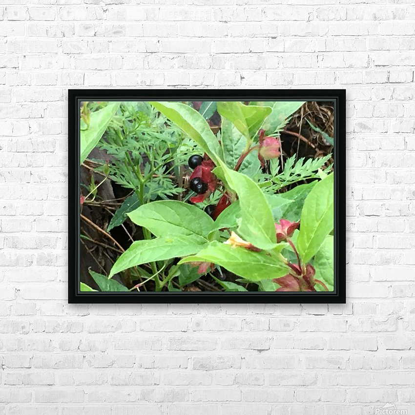 Shaded Berries HD Sublimation Metal print with Decorating Float Frame (BOX)