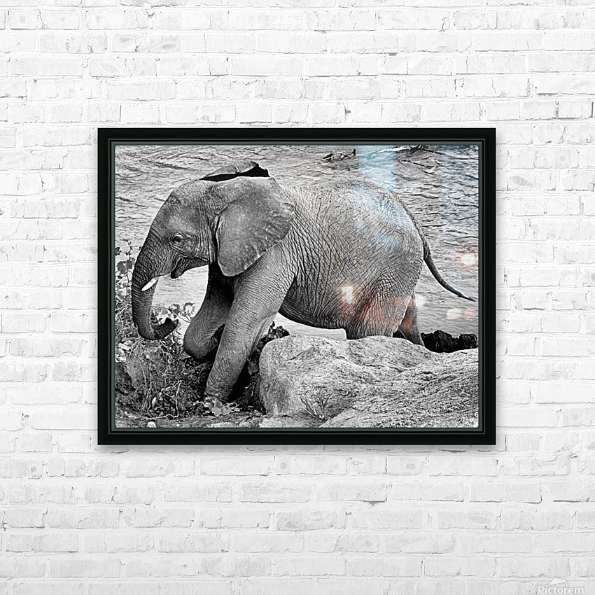 Elephant Baby HD Sublimation Metal print with Decorating Float Frame (BOX)