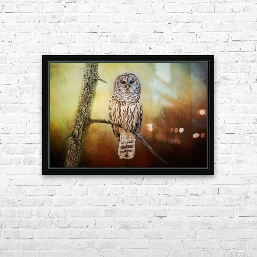 Barred Owl at sunrise with Textures HD Sublimation Metal print with Decorating Float Frame (BOX)