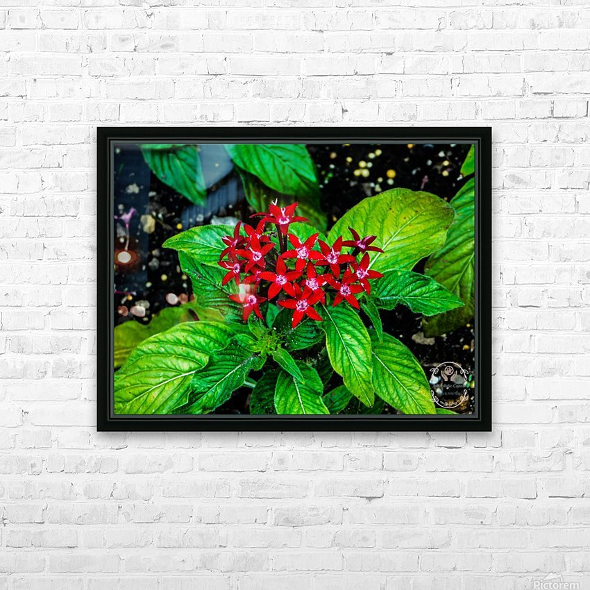 Beauty in the Flower HD Sublimation Metal print with Decorating Float Frame (BOX)