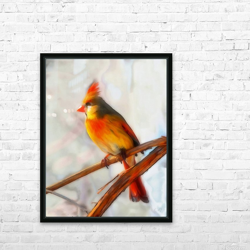 Cardinal HD Sublimation Metal print with Decorating Float Frame (BOX)