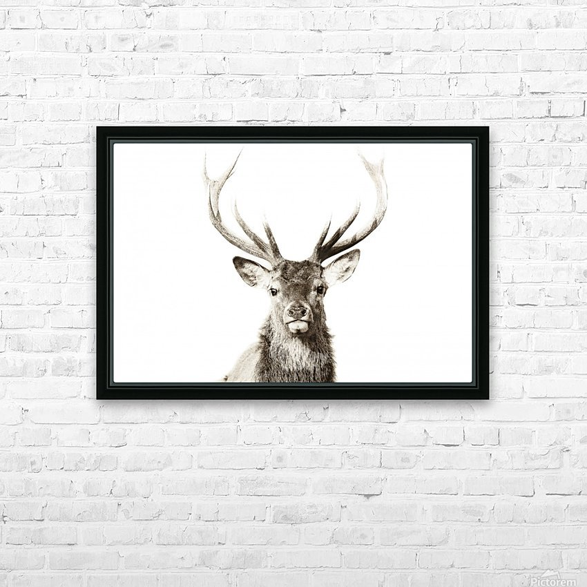 Cerf rouge HD Sublimation Metal print with Decorating Float Frame (BOX)