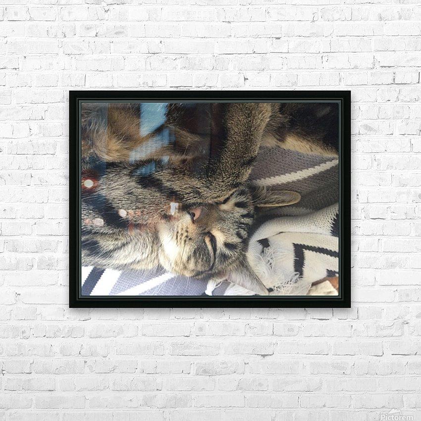 Gizmo - sleepy HD sublimation métal imprimé avec décoration flotteur cadre (boîte)