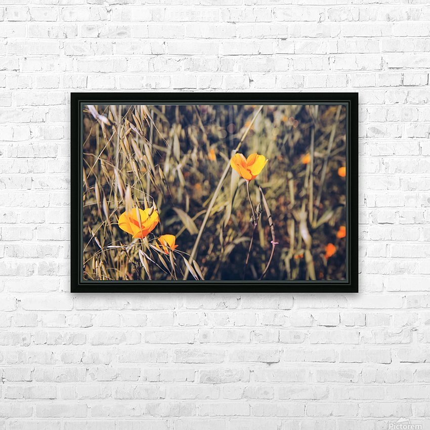 yellow poppy flowers with green leaves texture background HD Sublimation Metal print with Decorating Float Frame (BOX)