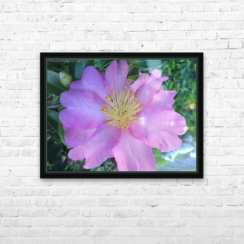 LOTUS DREAMING HD Sublimation Metal print with Decorating Float Frame (BOX)