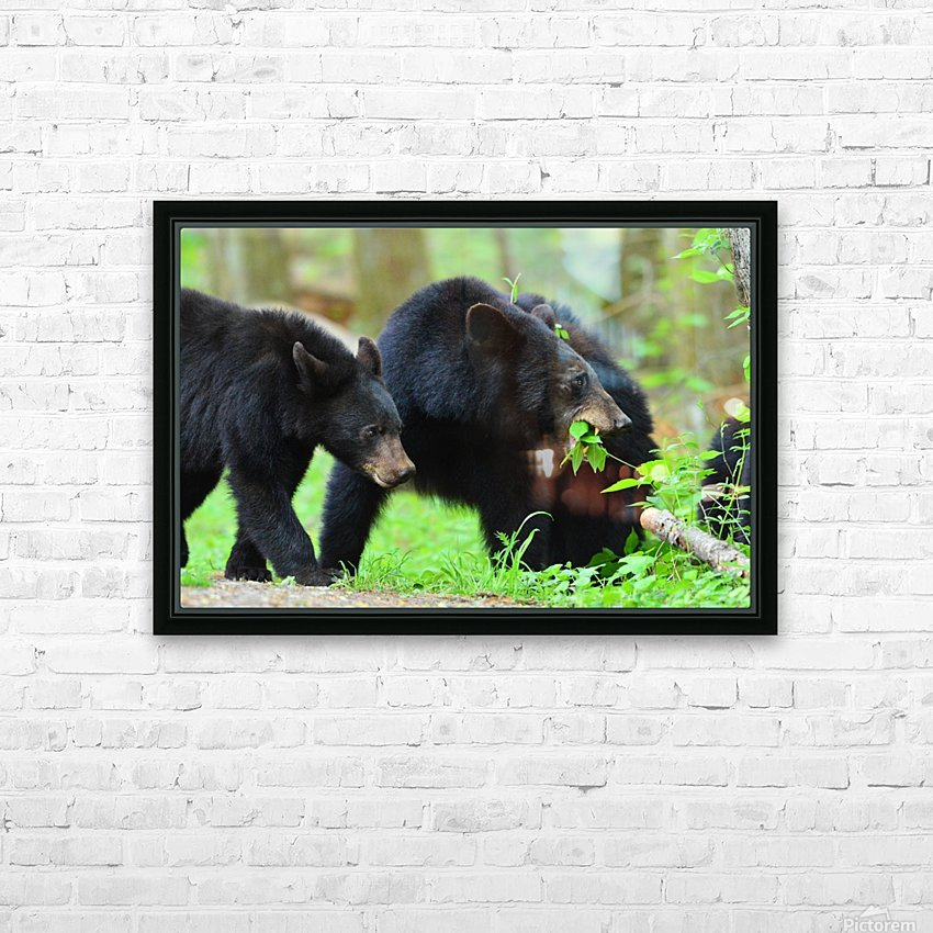 3541- Black bear HD Sublimation Metal print with Decorating Float Frame (BOX)