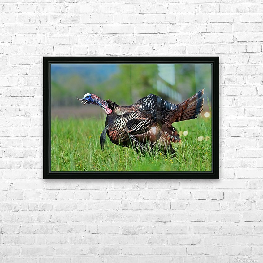 7_Gobbling Turkey HD Sublimation Metal print with Decorating Float Frame (BOX)