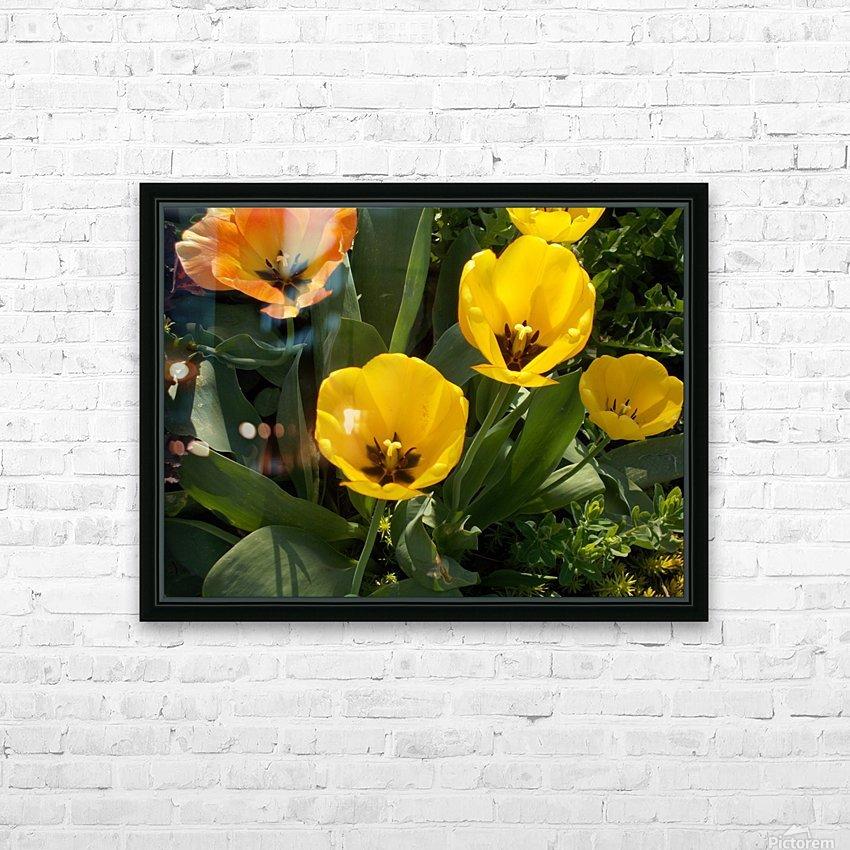 DSCN0763 HD Sublimation Metal print with Decorating Float Frame (BOX)