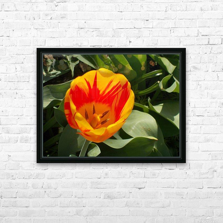 DSCN0767 HD Sublimation Metal print with Decorating Float Frame (BOX)