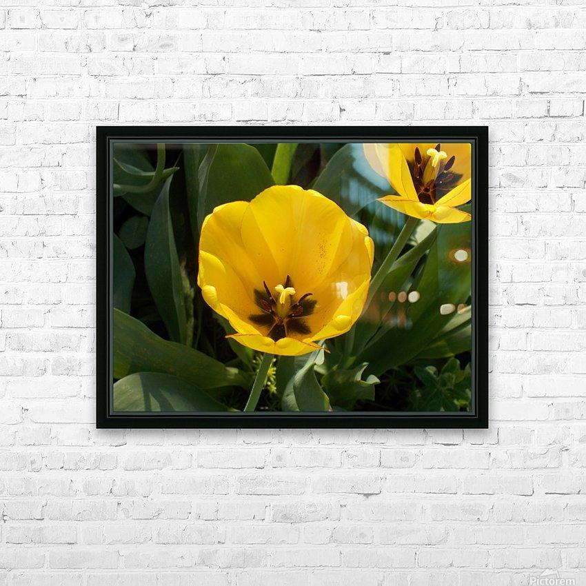 DSCN0764 HD Sublimation Metal print with Decorating Float Frame (BOX)