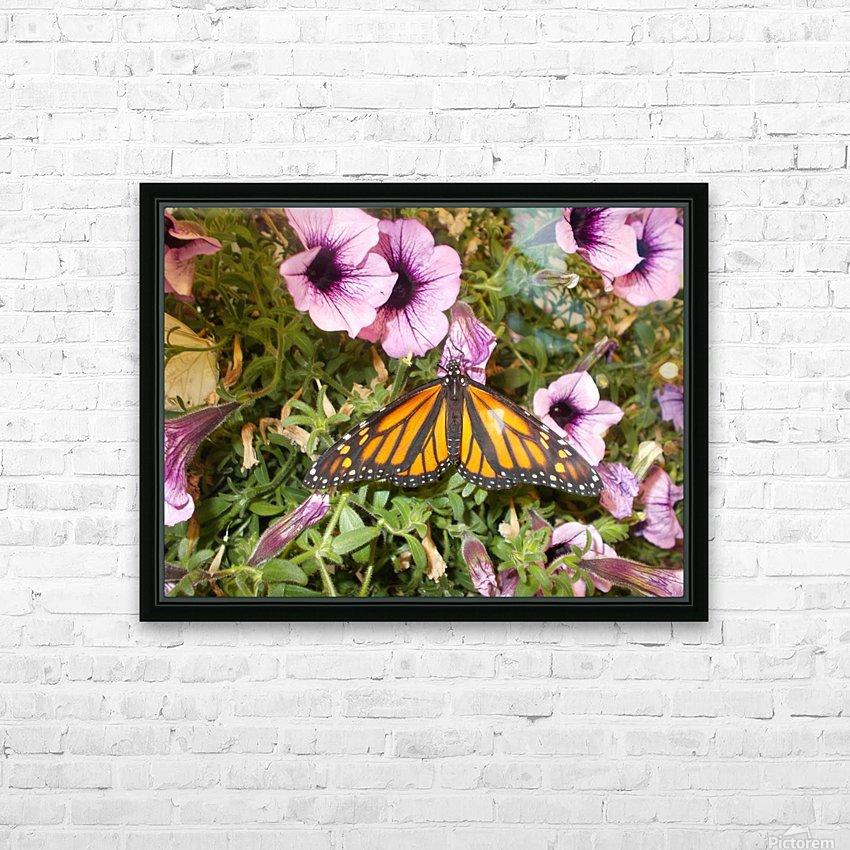 DSCN0649 HD Sublimation Metal print with Decorating Float Frame (BOX)