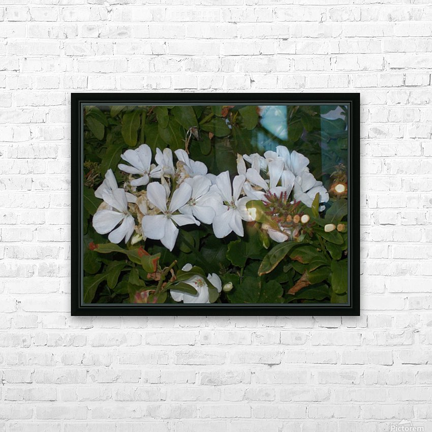 DSCN0570 HD Sublimation Metal print with Decorating Float Frame (BOX)