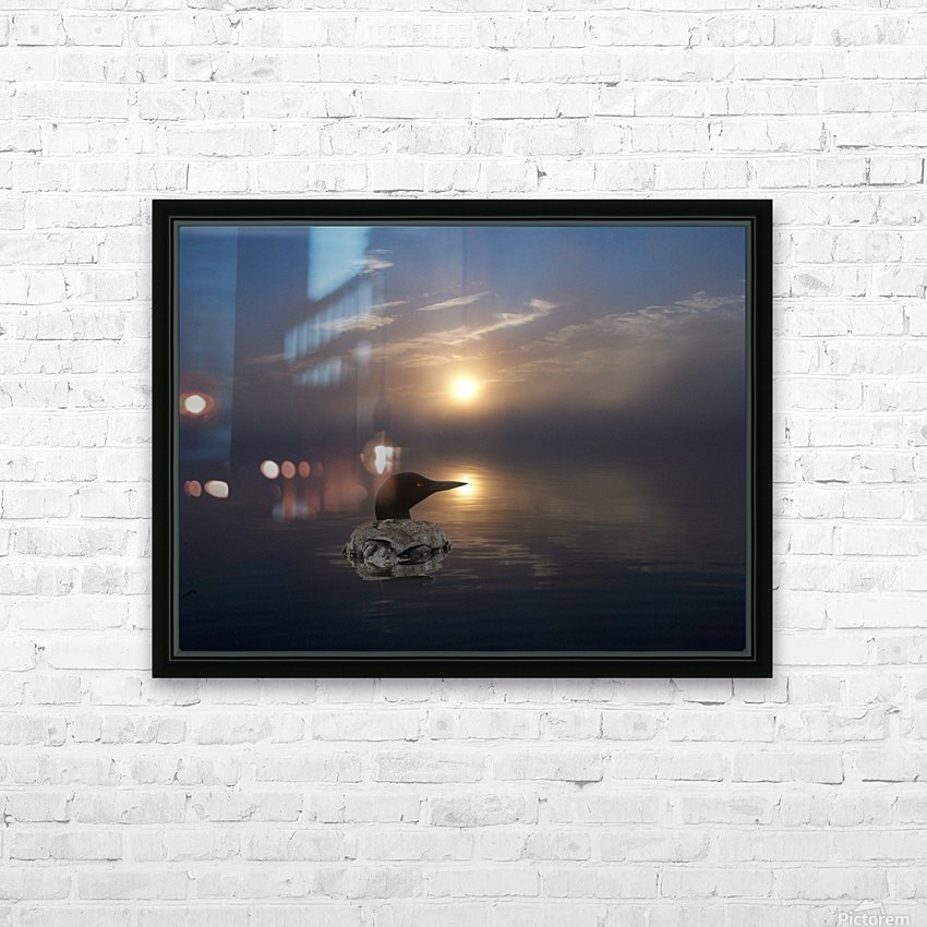 LoonAtSunrise_1527463927.19 HD Sublimation Metal print with Decorating Float Frame (BOX)
