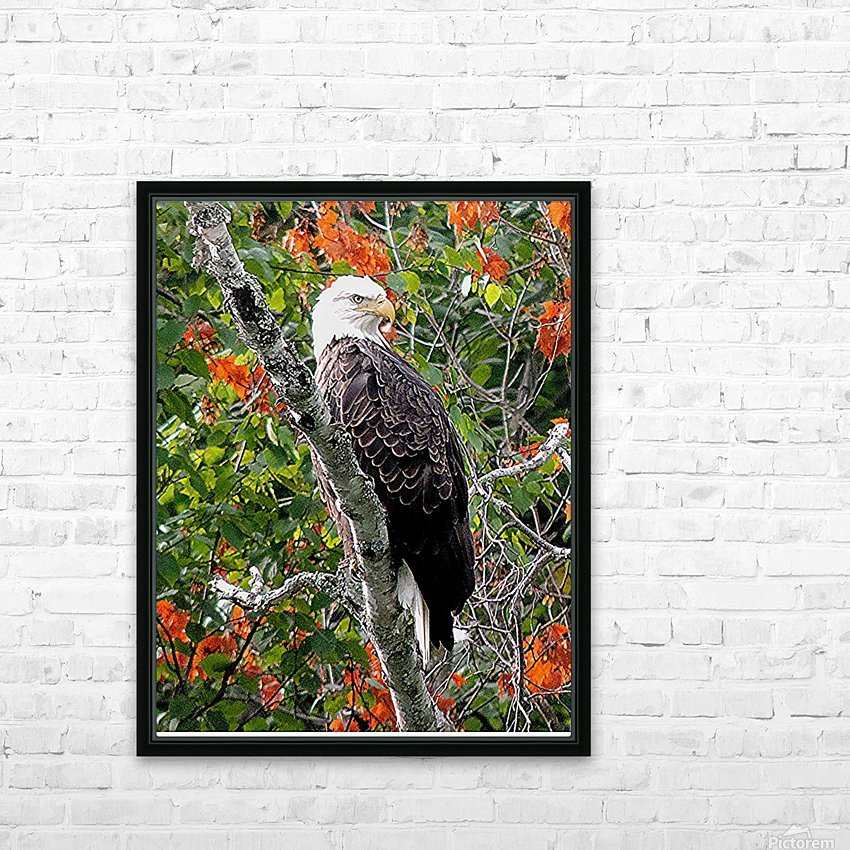 AutumnEagle HD Sublimation Metal print with Decorating Float Frame (BOX)