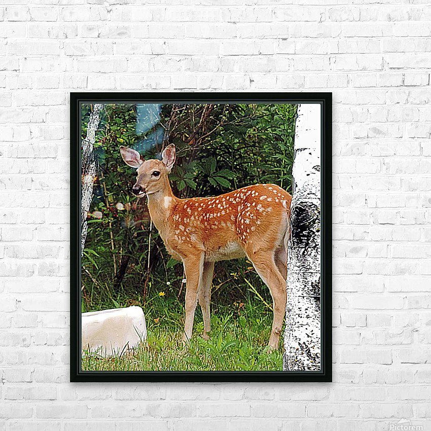 FawnBySaltBlock3 HD Sublimation Metal print with Decorating Float Frame (BOX)