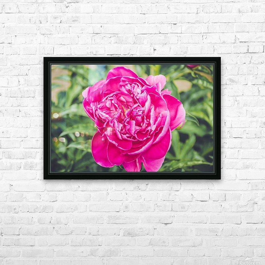 Deadly Beautiful Peonies HD Sublimation Metal print with Decorating Float Frame (BOX)