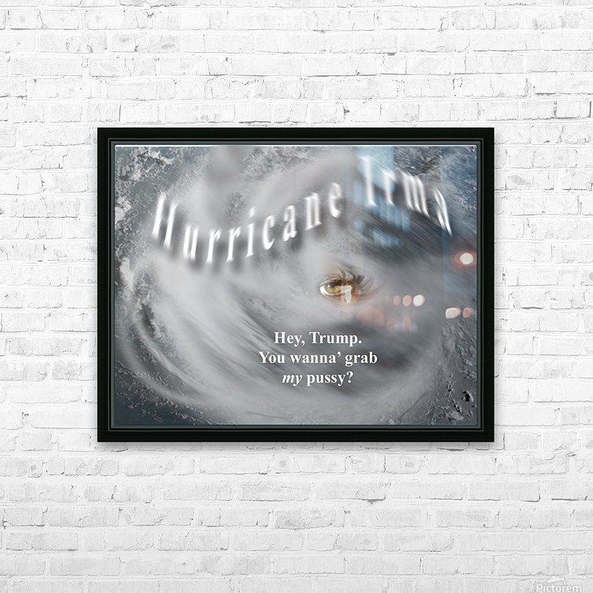 HurricaneIrma HD Sublimation Metal print with Decorating Float Frame (BOX)