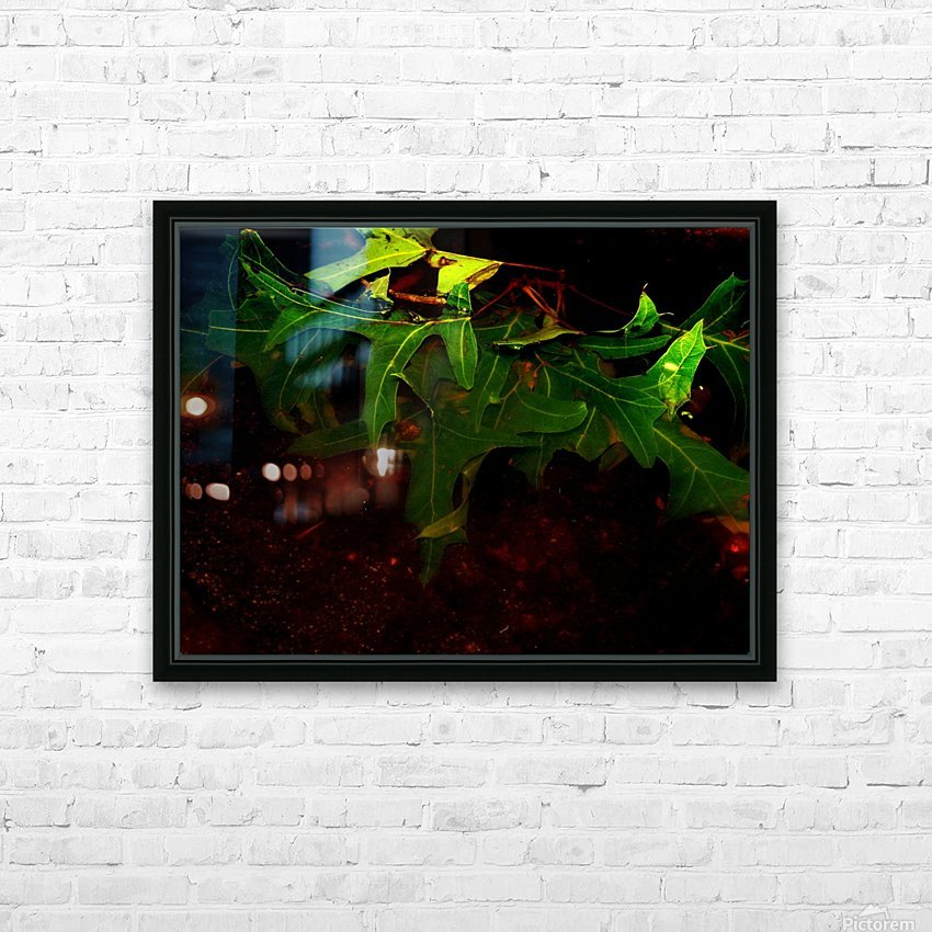 C (14) HD Sublimation Metal print with Decorating Float Frame (BOX)