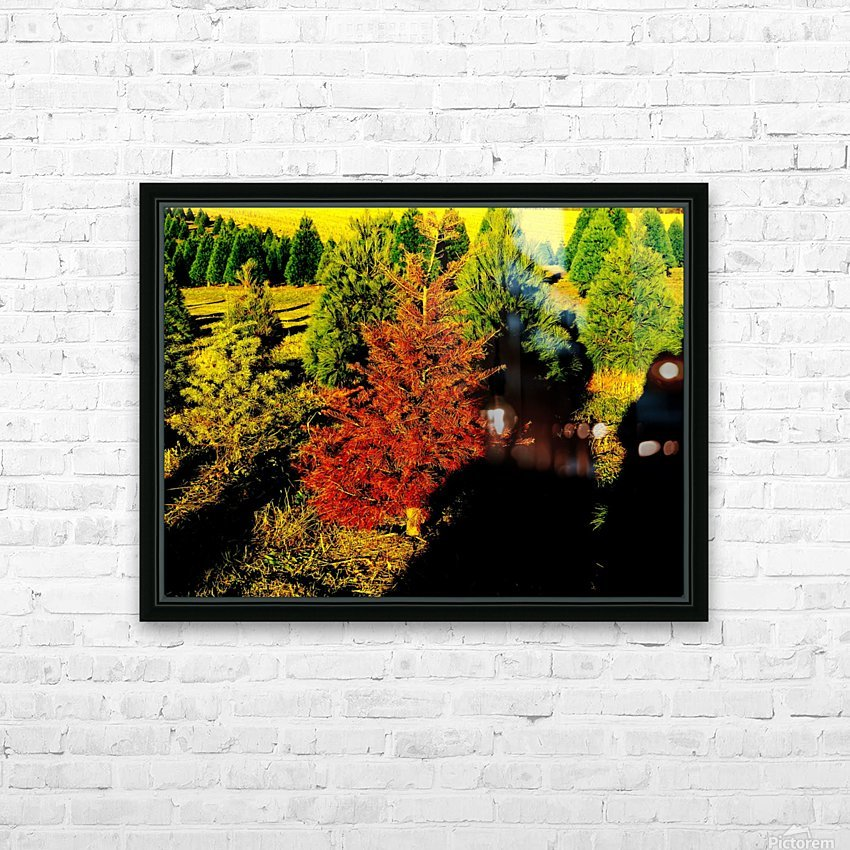 C (5) HD Sublimation Metal print with Decorating Float Frame (BOX)