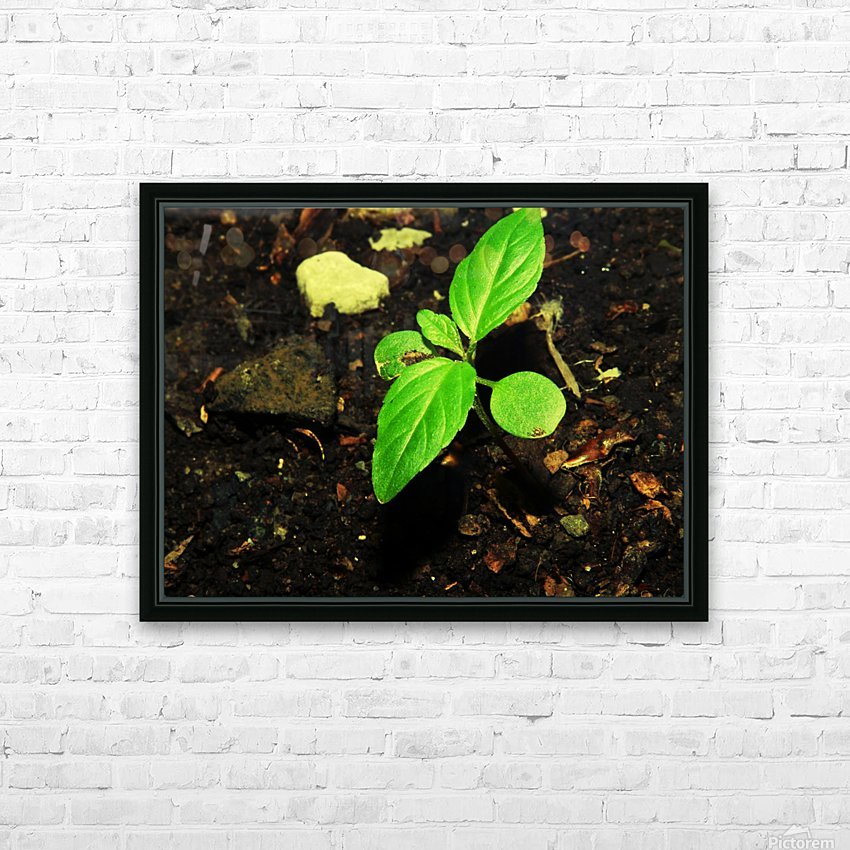 C (11) HD Sublimation Metal print with Decorating Float Frame (BOX)