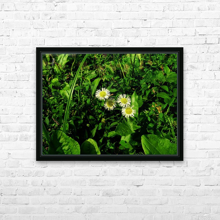 sofn-D38C2562 HD Sublimation Metal print with Decorating Float Frame (BOX)