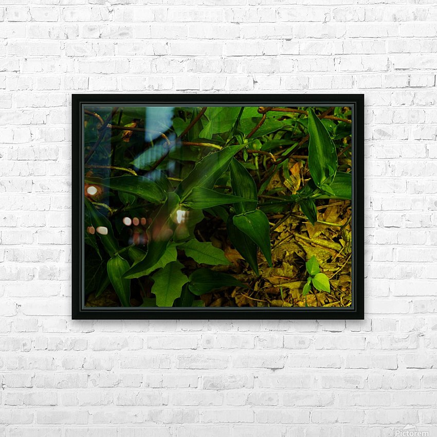 F (13) HD Sublimation Metal print with Decorating Float Frame (BOX)