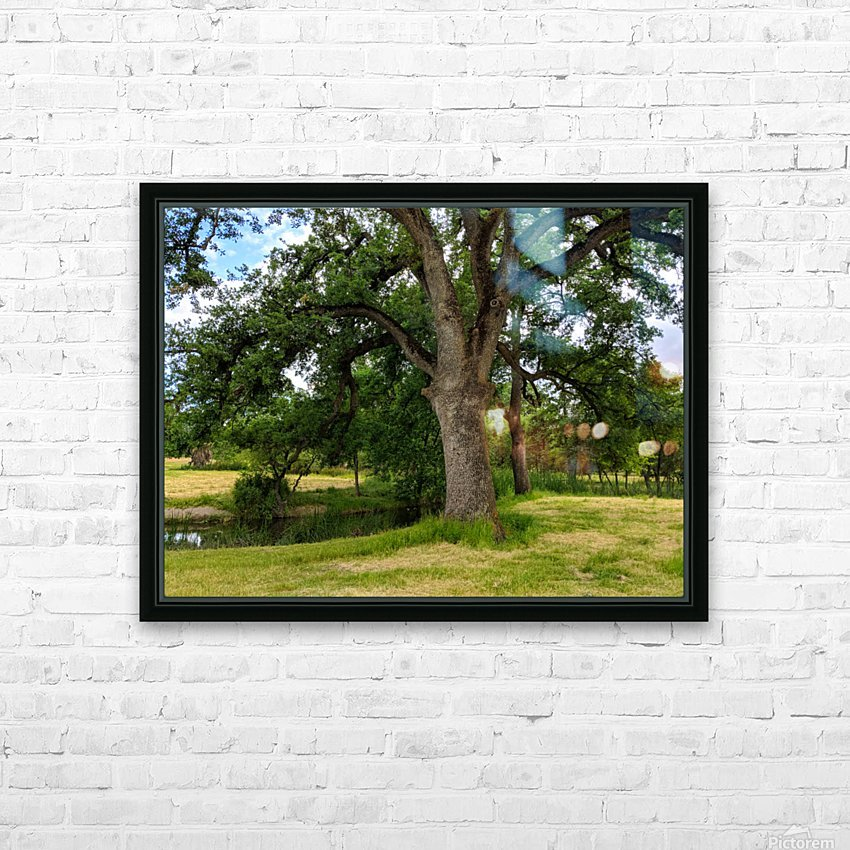 Oak Tree HD Sublimation Metal print with Decorating Float Frame (BOX)
