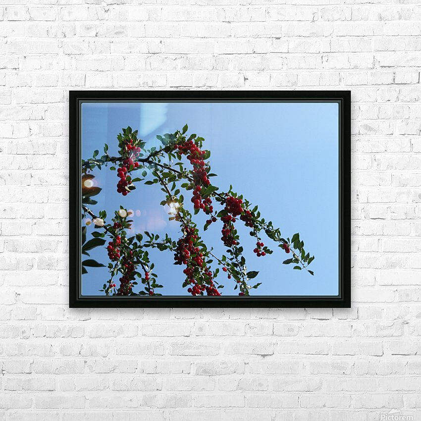 Summer Bounty HD Sublimation Metal print with Decorating Float Frame (BOX)