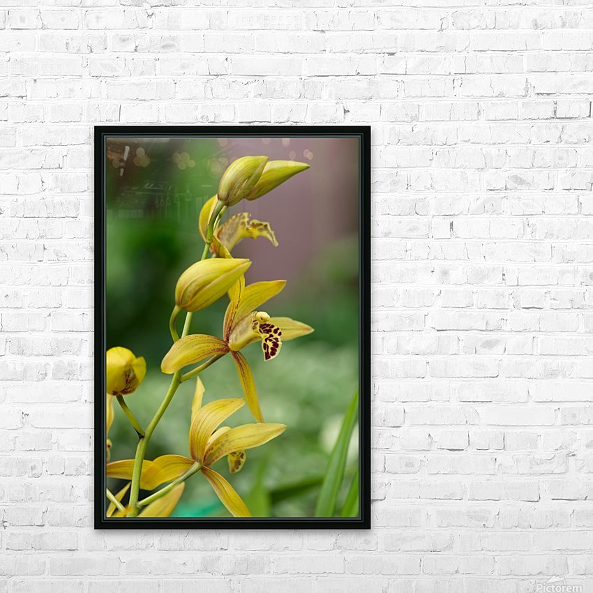 Yellow flowers stem HD Sublimation Metal print with Decorating Float Frame (BOX)