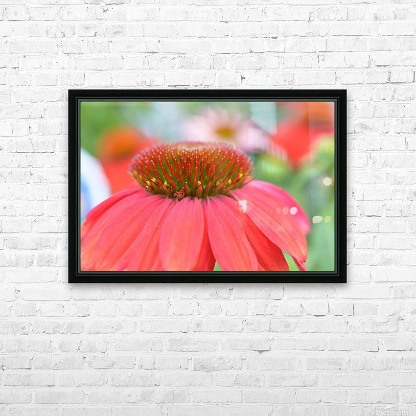 Orange Flower Photograph HD Sublimation Metal print with Decorating Float Frame (BOX)