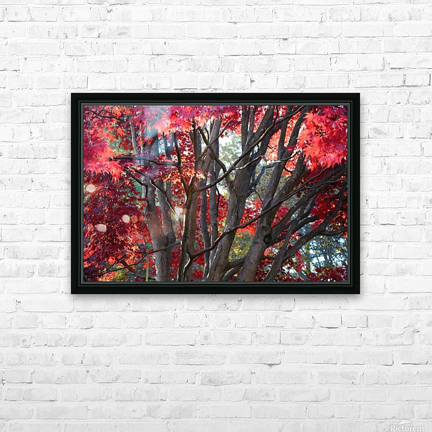Beautiful Red Fall Foliage HD Sublimation Metal print with Decorating Float Frame (BOX)