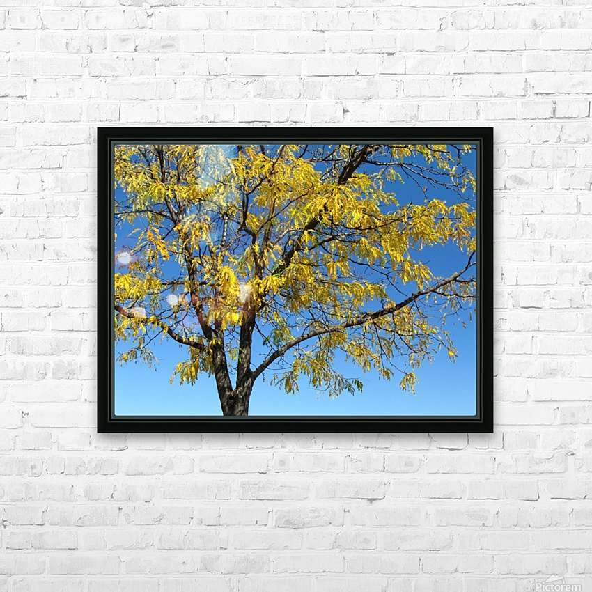 Beautiful Yellow Fall Foliage HD Sublimation Metal print with Decorating Float Frame (BOX)