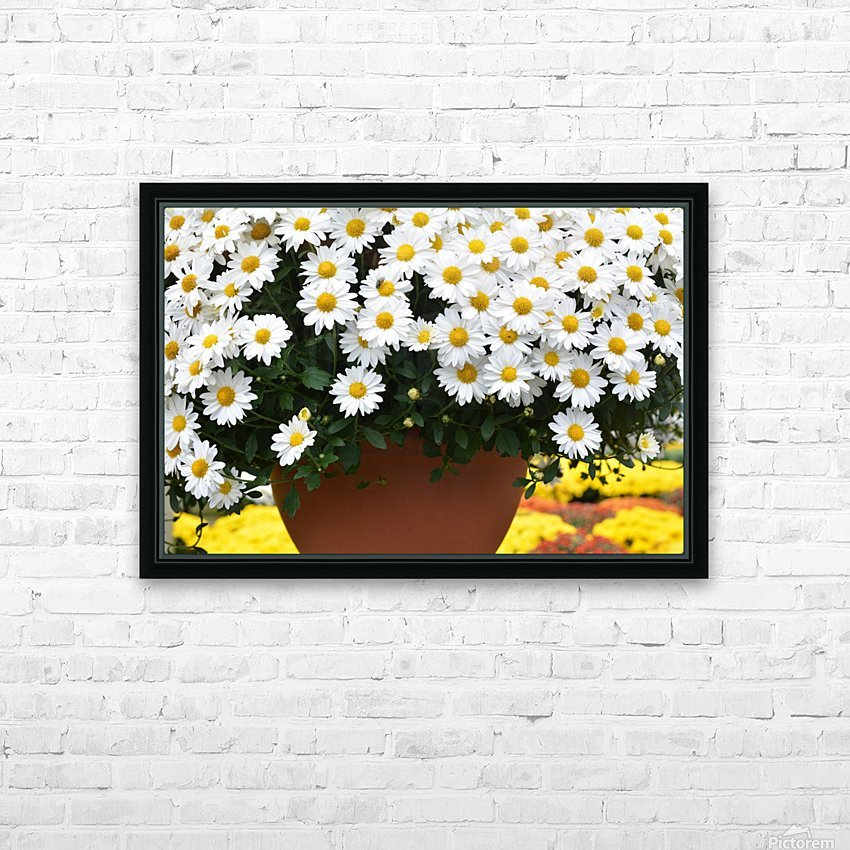 Beautiful White Flowers In A Hanging Basket Photograph HD Sublimation Metal print with Decorating Float Frame (BOX)