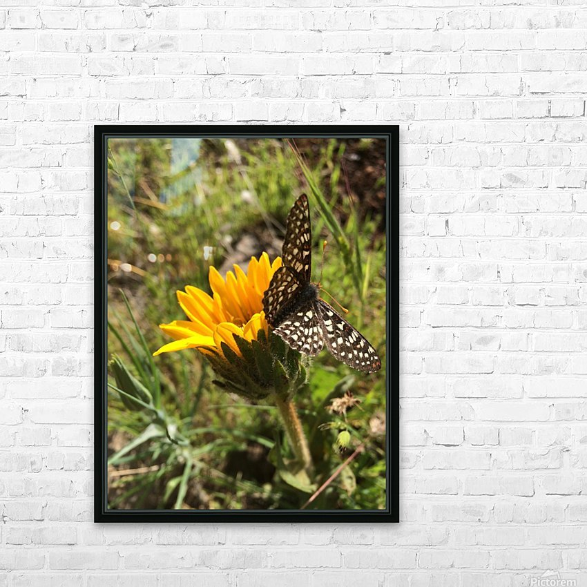Butterfly on Arrowleaf  HD Sublimation Metal print with Decorating Float Frame (BOX)