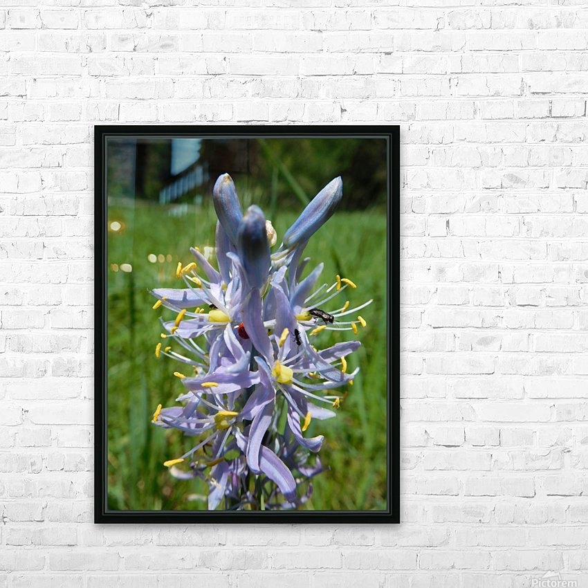 Great Camas HD Sublimation Metal print with Decorating Float Frame (BOX)