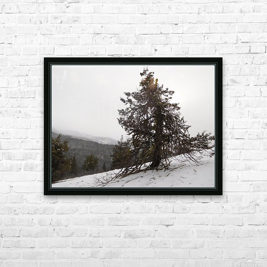 Snowy Mountain Juniper HD Sublimation Metal print with Decorating Float Frame (BOX)