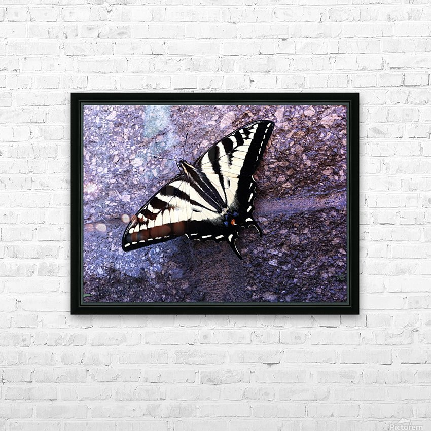 Swallowtail on Stone Wall HD Sublimation Metal print with Decorating Float Frame (BOX)