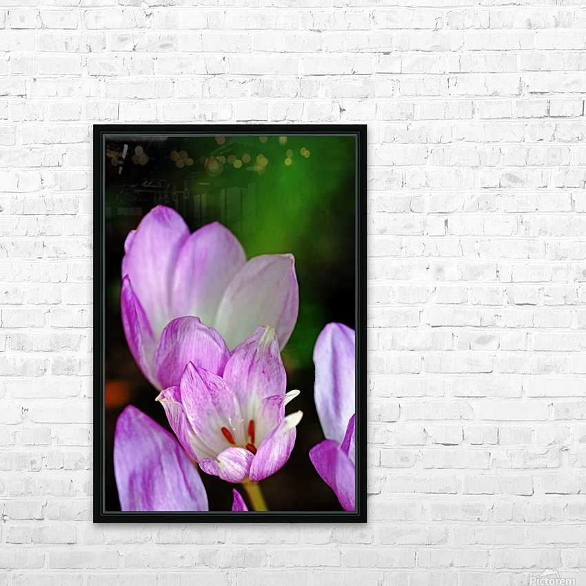 Fall Crocus HD Sublimation Metal print with Decorating Float Frame (BOX)
