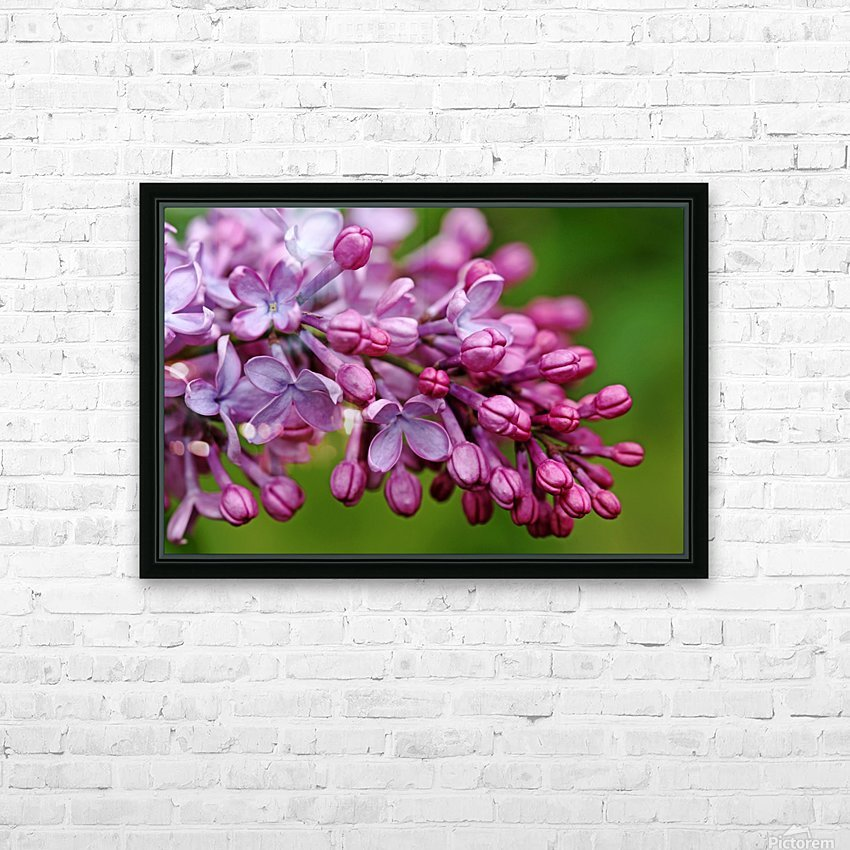 Fragrance Of Spring HD Sublimation Metal print with Decorating Float Frame (BOX)