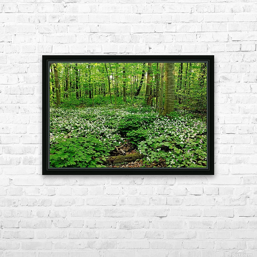 Trillium Woods VI HD Sublimation Metal print with Decorating Float Frame (BOX)