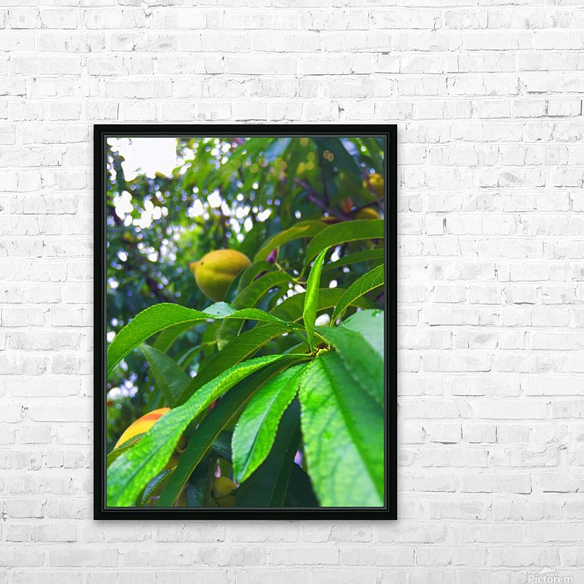 Peach  HD Sublimation Metal print with Decorating Float Frame (BOX)