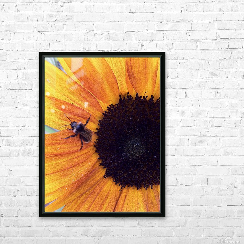 Bee on Sunflower HD Sublimation Metal print with Decorating Float Frame (BOX)