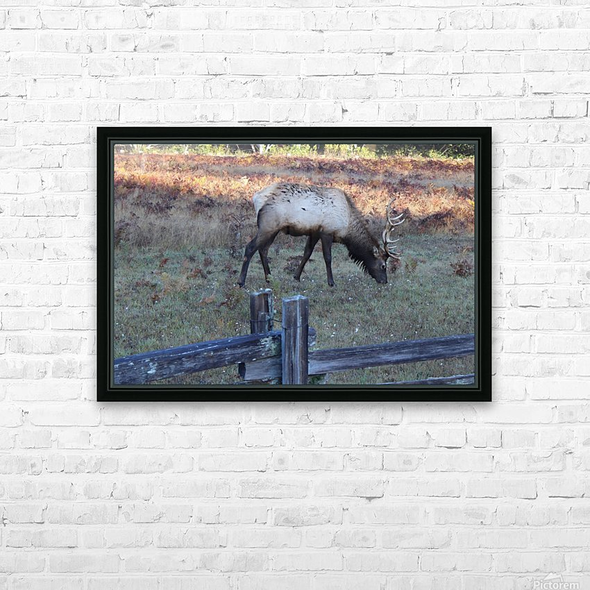 Bowing Elk HD Sublimation Metal print with Decorating Float Frame (BOX)