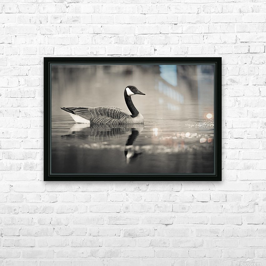 Canada Goose - 2 HD Sublimation Metal print with Decorating Float Frame (BOX)