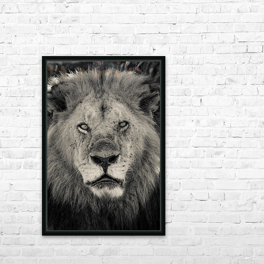 The King of South Africa - 2 HD Sublimation Metal print with Decorating Float Frame (BOX)