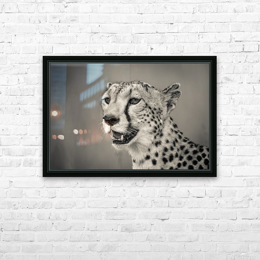 Cheetah Portrait HD Sublimation Metal print with Decorating Float Frame (BOX)
