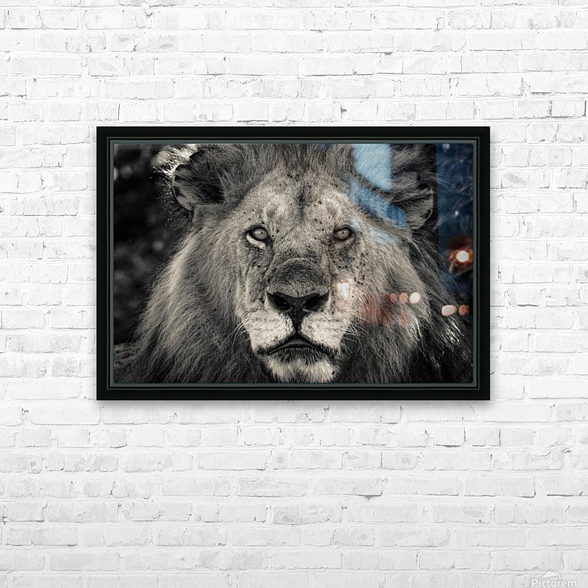 The King of South Africa - 1 HD Sublimation Metal print with Decorating Float Frame (BOX)