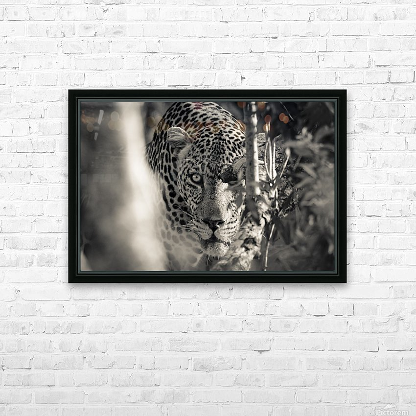 Eyes of the Leopard HD Sublimation Metal print with Decorating Float Frame (BOX)