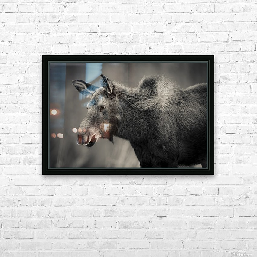 Young Moose HD Sublimation Metal print with Decorating Float Frame (BOX)