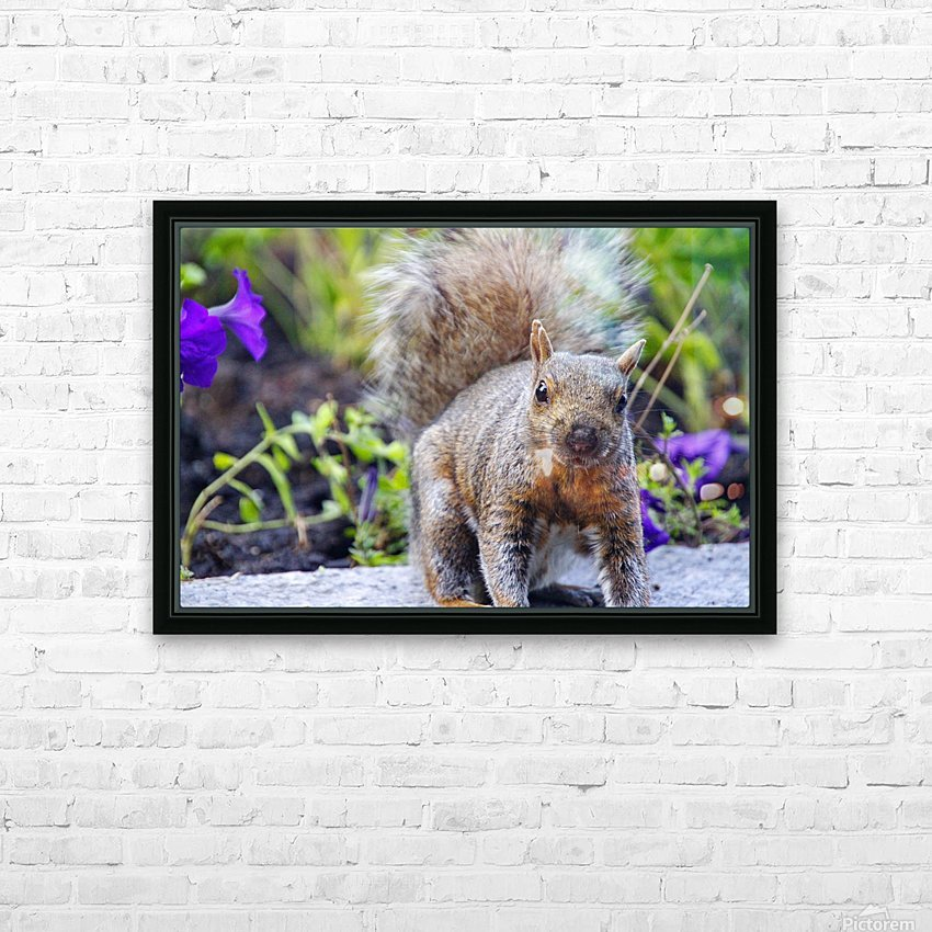 Looking for me HD Sublimation Metal print with Decorating Float Frame (BOX)